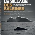 couverture-dvd-dans-le-sillage-des-baleines-recto